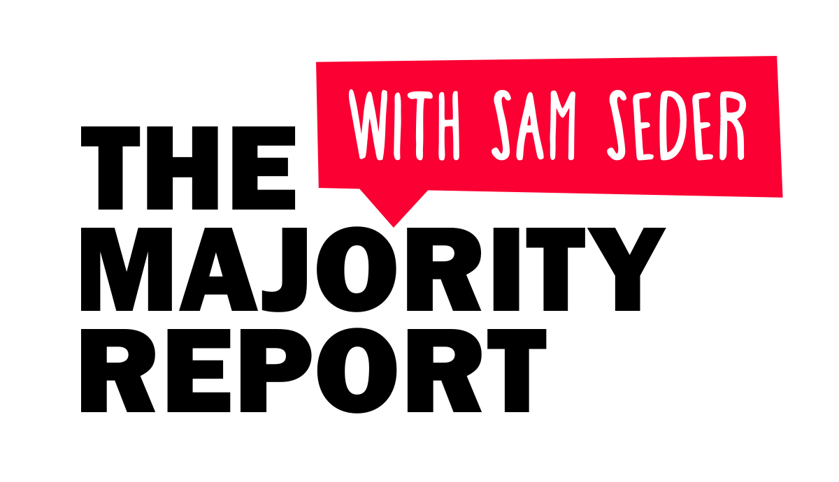 Image result for the majority report with sam seder
